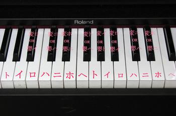 ピアノ鍵盤(和名).jpg